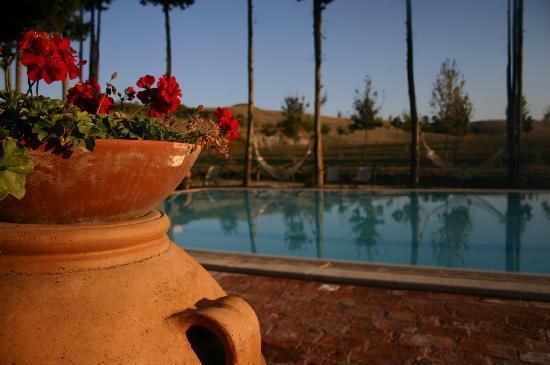 Aia Vecchia di Montalceto: the most beautiful pool ever!