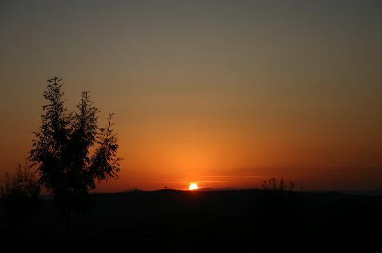 Aia Vecchia di Montalceto: tuscan sunset