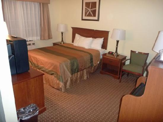 Best Western York Inn: The Bedorom area