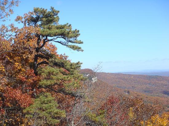Moondance Ridge Bed & Breakfast: Vistas from Mohunk Preserve