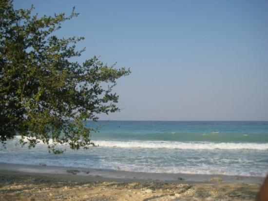West Bali National Park, Indonésie : Plage naturelle