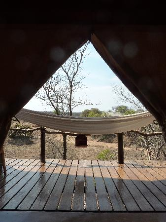 Garonga Safari Camp: The view from the tent