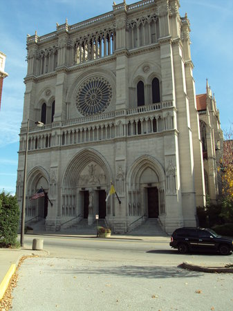 ‪St Mary's Cathedral Basilica of the Assumption‬