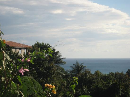 The English Rose / La Rosa Inglesa - GUESTHOUSE: View from deck