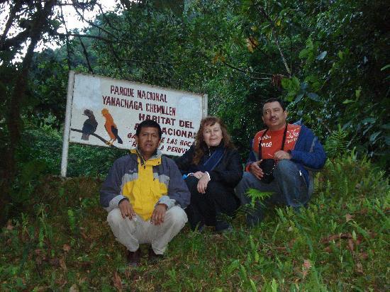 Yanachaga Chemillen National Park, Peru: parque yanachaga chemillen