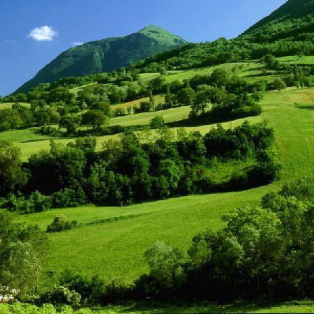 Castelraimondo, Italien: Le colline