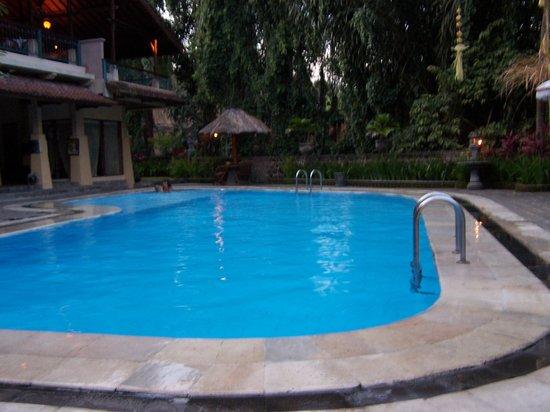 Bali Wirasana Hotel : piscine a coté