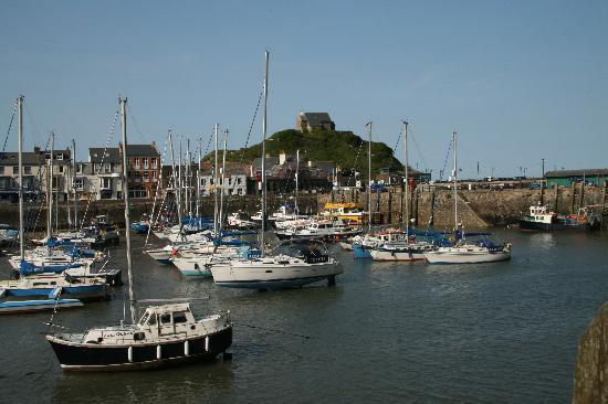 The Towers Hotel : Ilfracombe Harbour