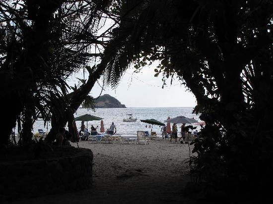 Hotel Coco Beach: The beach :)