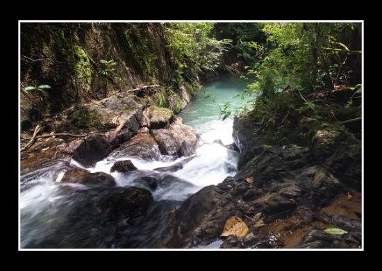 อุทยานแห่งชาติเขาสก: Khao Sok National Park