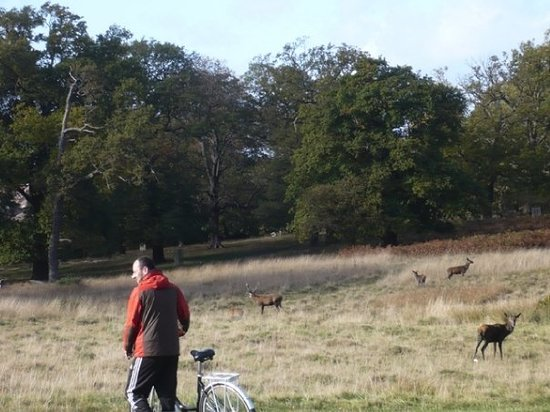 Richmond Park Golf Course