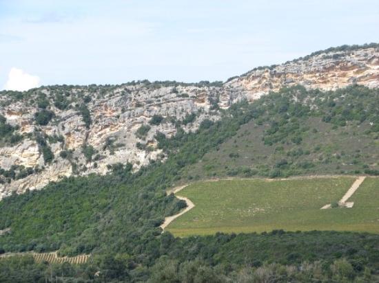Patrimonio wine country in the Nebbio.