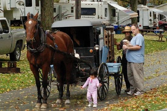 Old Mill Stream Campground: Amish pie & pastry buggy