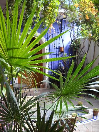 Hotel Julamis: Garden