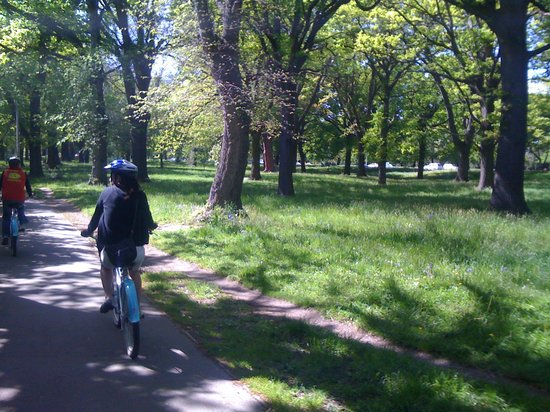 Christchurch Bike & WalkingTours: on the ride