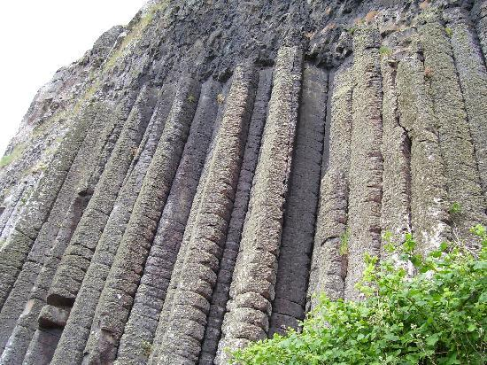 unique walls - picture of giant's causeway, bushmills - tripadvisor