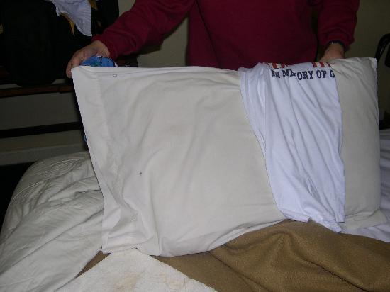 Pottsville Motor Inn: White shirt against pillow case