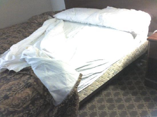 The Madison Inn by Riversage : Turning back covers, wrinkled, used linens