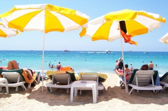Palmiye Beach Hotel Bild