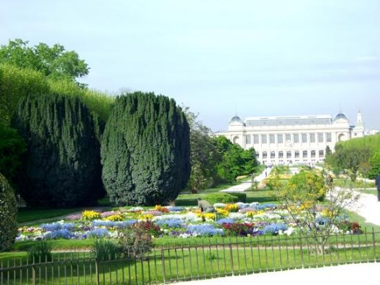 En face de la galerie de l 39 volution picture of jardin for Jardin france