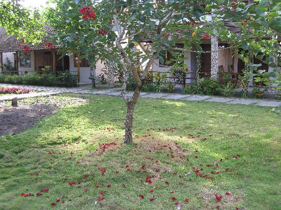 Cocotinos Manado: Garden View