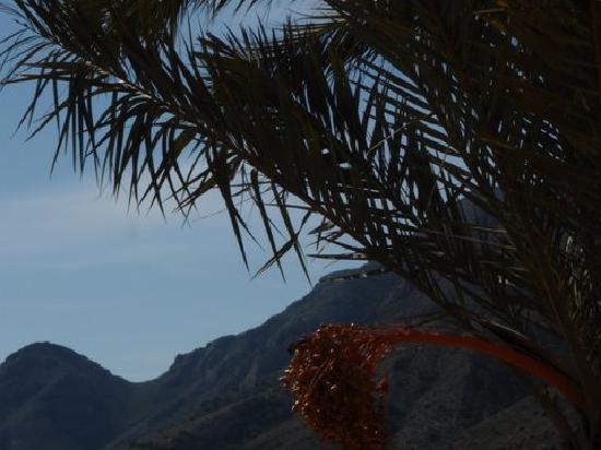 Camping Naturista El Portus: vistas 6