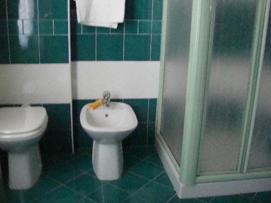 Hotel Cualbu : Single room's ensuite