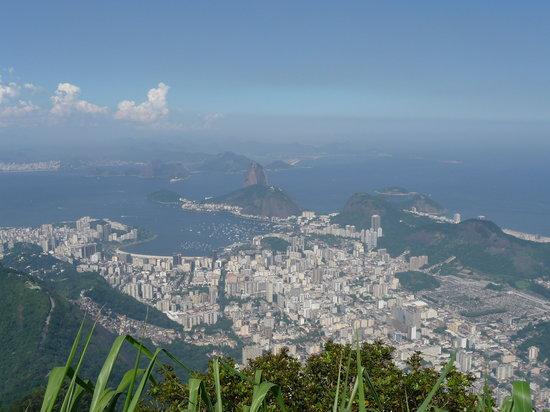 Rio de Janeiro's Bay