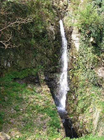 La Valle dei Castagni: fiume pescia, cascatella