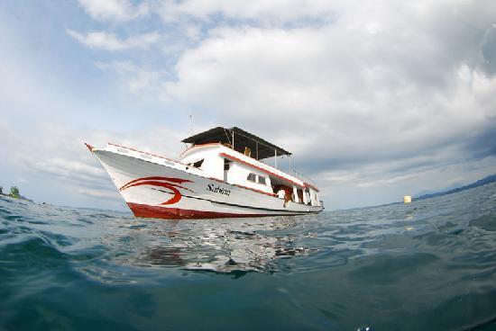Bilde fra Cocotinos Manado
