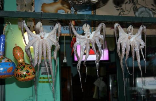 """Lésbos, Grecia: Bläckfiskar på """"tork"""""""