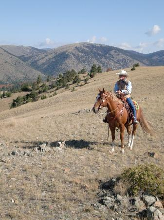 Hidden Hollow Hideaway Cattle and Guest Ranch: scenery like a movie set