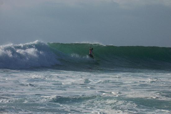 La Joya, Villa & Bungalows : surfeur