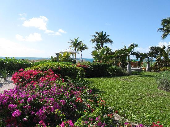 Royal West Indies Resort: Royal West Indies