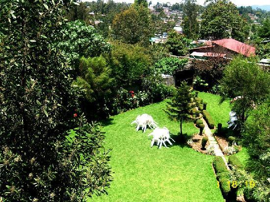 Yeka Guest House: Garden view