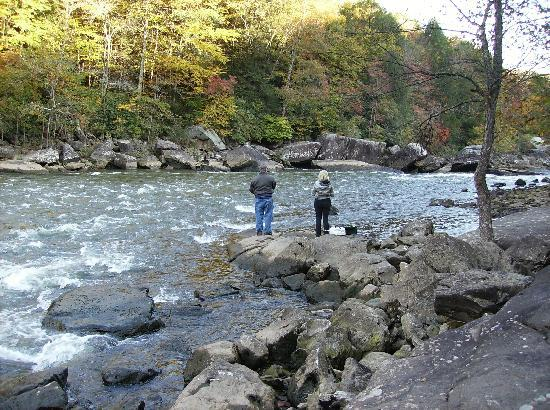 Super 8 Summersville: Fishing - Gauley River rapids