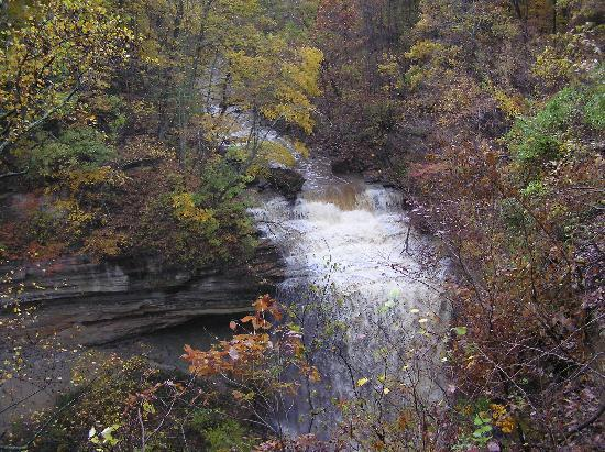 Clifty Falls State Park: The Falls