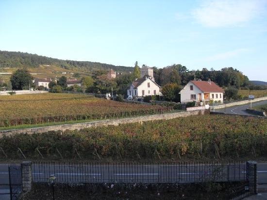 Hotel Les Grands Crus : View towards Gevrey Castle