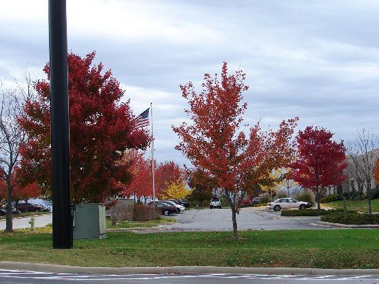 Days Inn Battlefield Rd/Hwy 65: Beautiful fall surroundings