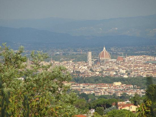 Bed and Breakfast La Limonaia: The view of Florence and the Duomo from La Limonaia's garden