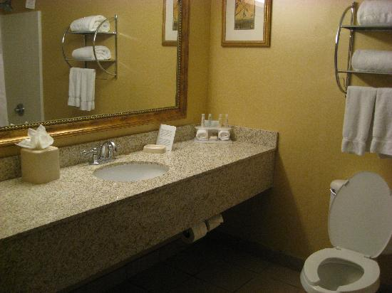Holiday Inn Express Phoenix Airport (University Drive): Bathroom