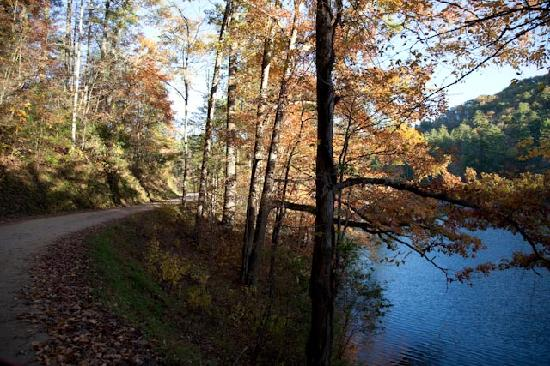 Robbinsville, NC: Road beside the lake leading to the inn