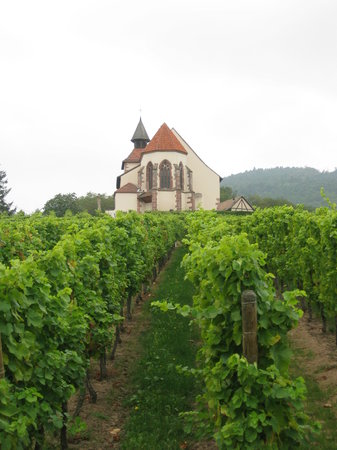 Willy Gisselbrecht Winery: Chapel above Dambach
