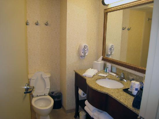Hampton Inn & Suites Wells-Ogunquit: Bathroom