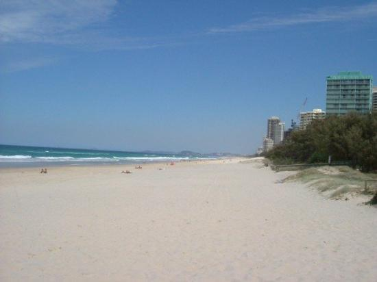 Surfer's Paradise Beach Photo