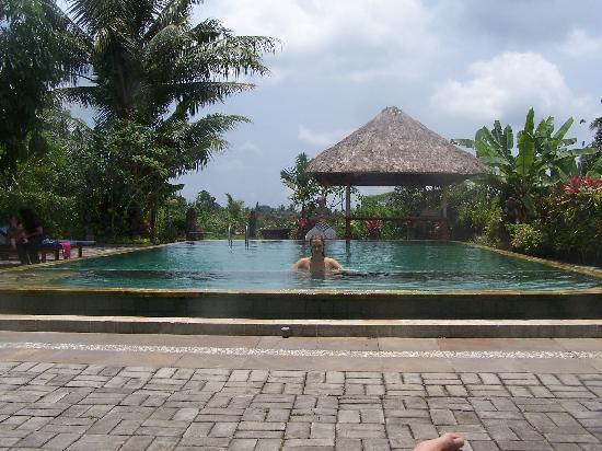 Gayatri Bungalows : The beautiful pool!