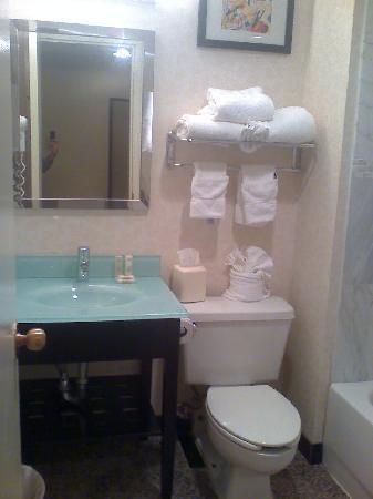 Ramada Plaza Holtsville Long Island: Bathroom