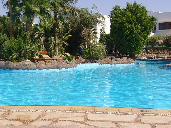 Delta Sharm Resort: Main Pool! Huge!