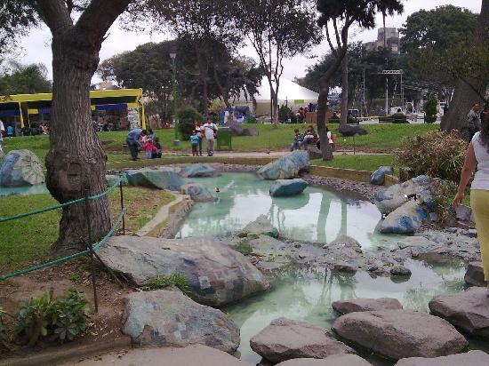 Lima Parque Exposicion 6