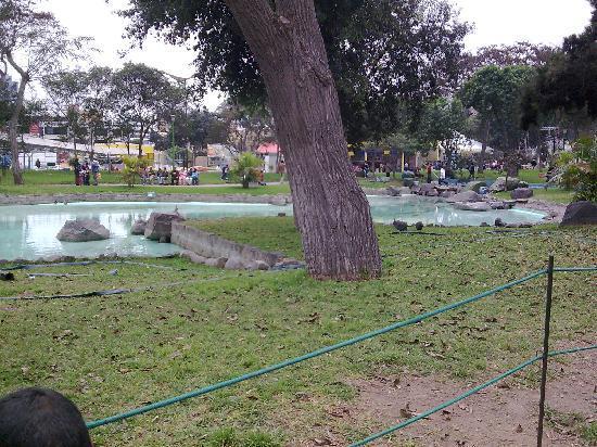 Parque de la Exposicion: Lima Parque Exposicion 8